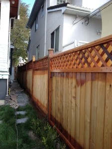 Fence staining, Vancouver, during