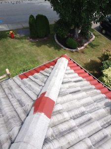 Roof1 painting, Coquitlam, before